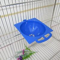 Œufs d'oiseaux de cages décoratives de cage à nid canari