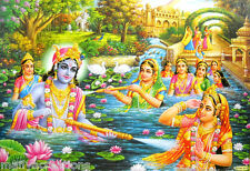 """Lord Krishna playing Holi with Radha and Gopis Hindu Poster  21""""X 31"""" (LM3178)"""