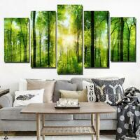 Ray of Sunshine Forest 5 piece HD Modern Art Poster Wall Home Decor Canvas Print