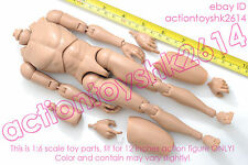 1/6 scale Hot Action Figure Caucasian Narrow Shoulder Ver - TTM18 Nude Body toys