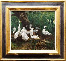 Tiermaler 19. Jahrhundert, signiert: Weiße Reiher am Ufer, Ölgemälde, 36 x 40 cm