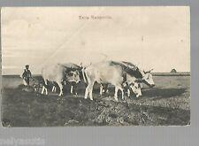 Postcard. Russia, Ukraina, type #3