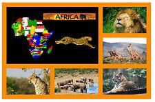 Africa - Negozio di souvenir novità Magnete del frigorifero - Viste / PAESI -