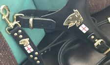 ENGLISH BULL TERRIER REAL LEATHER HARNESS AND LEAD SET- SILVER/BRASS
