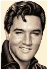ELVIS PRESLEY - complete counted cross stitch kit + all materials needed