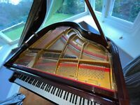 OUTSTANDING Modern Offenbach Baby Grand Piano TUNED & DELIVERED + STAR History!