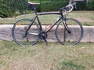 Falco Elite Road Bike