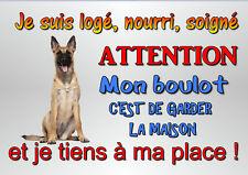 plaque attention chien malinois berger belge en métal 29x20cm percée réf 51b