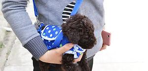 Cute Dog Cat Puppy Pet Handbag Carriers Pouch Messenger bag