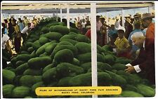 1940's Piles of Watermelons at the Fair Grounds in Rocky Ford, CO Colorado PC