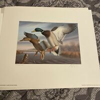 1988 Virginia Migratory Waterfowl Print,1st of State,Signed & Numbered