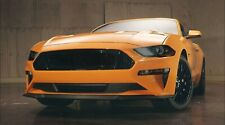 2018/2019/2020 Mustang [FR] Complete Front and Rear Lens Tint Kit - 20% Tint
