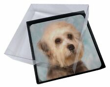 4x Dandie Dinmont Dog Picture Table Coasters Set in Gift Box, AD-DD1C