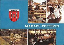 BT7671 Marais Poitevin la mariage en barque       France