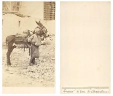 Egypte, loueur d'âne à Alexandrie CDV vintage albumen carte de visite Tir