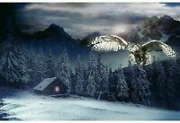 "Fabric Panel - Hoffman Digital - Call of the Wild Mountain Owl Cabin Scene 28"""