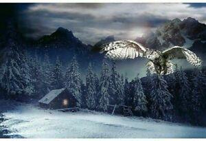 "Call of the Wild Mountain Owl Cabin Scene 28"" Fabric Quit Panel Hoffman Digital"