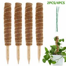 Kokos Pflanzstab Rankhilfe Rankstab Palm Stick Für Zimmerpflanzen BlumenKlettern