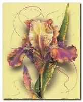 Iris Flower Floral Fine Wall Decor Art Print Poster (16x20)