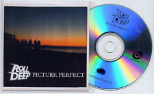 ROLL DEEP Picture Perfect UK numbered 10-trk promo test CD Horx & Spoon