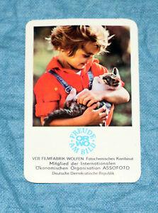 DDR Taschenkalender ORWO Assofoto 1978 Kind Katze