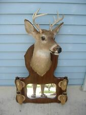 Whitetail 8 Point Shoulder Mount With Mirror And Hoof Gun Display