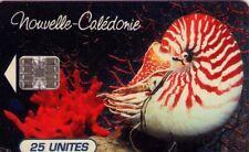 TARJETA TELEFONICA DE NUEVA CALEDONIA. Nautilus macromphalus - Aquarium municipa