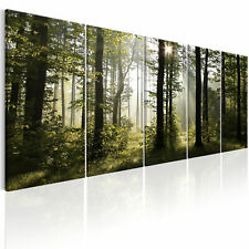 FOREST NATURE Canvas Print Framed Wall Art Picture Photo Image c-B-0288-b-m