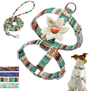 Small Medium Dog Strap Harness & Leash set Pet Flower Studded Nylon Walking Vest