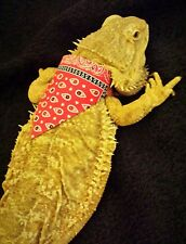 Lil' Bestie Bearded Dragon Bandana red white and blue