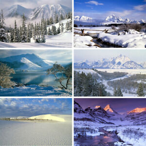 Dreamy Snowy View Background Studio Photography Backdrop Props
