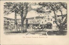 early Postcard, California, Riverside, The Glenwood Campanile, Undivided Back