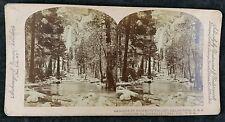 Antique American Stereoview - Cascade in Yosemite Valley, California, Underwood