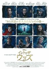 Into the Woods - original movie poster - 28x40 Japanese B1 RARE