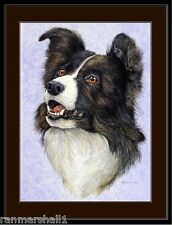 English Print Border Collie Shepherd Dog Art Picture