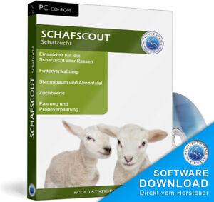 Schafe züchten,Lämmer verkaufen, Stammbaum erstellen,Schafscout Software
