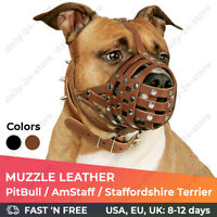 PitBull AmStaff Dog Muzzle Real Leather Staffordshire Terrier Secure Basket