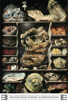 Louvre Museum, Rocks and Minerals, Fine Art Print, Alexander Isidore deBarde Art