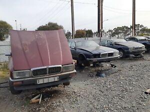 Wrecking Jaguar Daimler Xj40 msg for prices