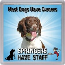 "English Springer Spaniel Coaster  ""Springers Have Staff"" by Starprint"