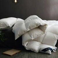 Globon Fusion Goose Down Comforter Queen, Heavy Weight Winter 100% Cotton Shell