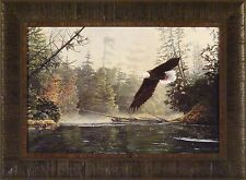 OUT OF THE MIST by Greg Clair 17x23 FRAMED PRINT PICTURE Eagle Soaring Flying