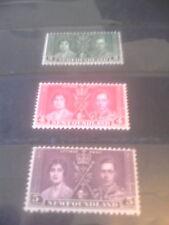 NEWFOUNDLAND 1937 Coronation Unhinged Mint