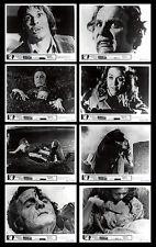GRAVE OF THE VAMPIRE original 1972 lobby photos MICHAEL PATAKI/WILLIAM SMITH