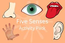FIVE SENSES Activity Pack - Inc. ACTIVITY PLANS & EXAMPLE EVALUATIONS!