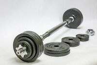 OMNIE 65 LBS ADJUSTABLE DUMBBELLS BARBELL FITNESS HAND WEIGHT SET GYM WORKOUT