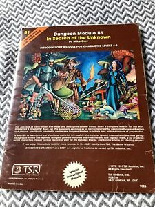 Dungeons & Dragons In Search of the Unknown B1 Module Adventure 1981