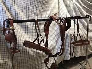 Oiled Gig Leather driving harness Best Quality On eBay Shetland, Pony, Cob Full