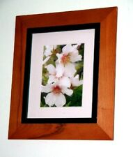 """""""Dew Drops on Almond Blossom or First Sign of Spring"""" by D Hartshorn Aussie Art"""