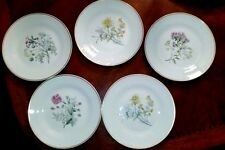 "Richard Ginori Primavera Salad Lunch Plates 8"" - lot of 5"